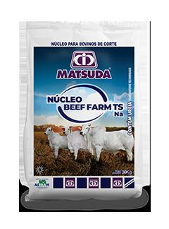 Matsuda Núcleo Beef Farm TS Na