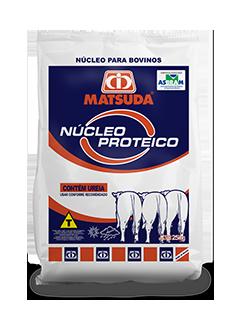 Matsuda Núcleo Proteico