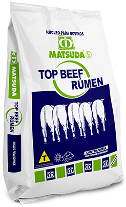 Matsuda Top Beef Rúmen