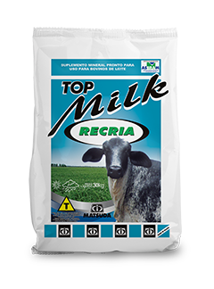 Matsuda Top Milk Recria