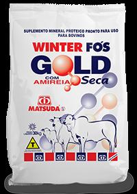 Matsuda Winter Fós Gold
