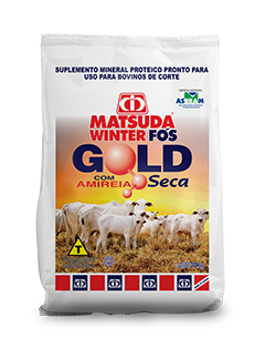 Matsuda Winter Fós Gold Seca