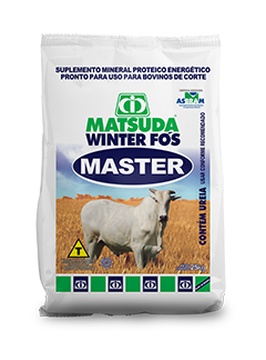 Matsuda Winter Fós Master