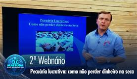 2º Webnário - Pecuária lucrativa. Como não perder dinheiro na seca