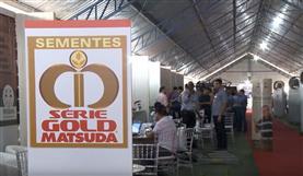 Intercorte (Ji-Paraná) 2016