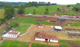 Lançamento cultivares - Matsuda Minas Gerais
