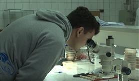 Matsuda recebe visita de alunos da Unesp de Dracena - SP