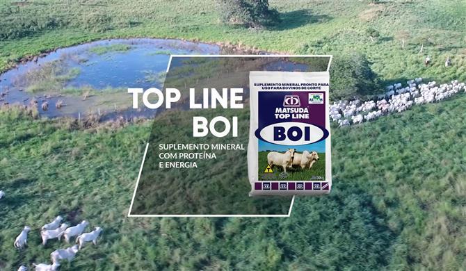 Para ganhos superiores, Top Line Boi