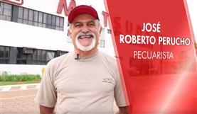 Por que quem usa Matsuda não muda, Matsuda? José Roberto Perucho